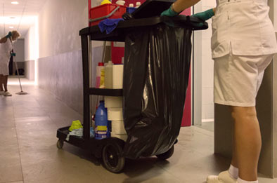 Cleaning Cart